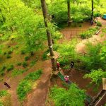 Treetop adventure park and bonus offered
